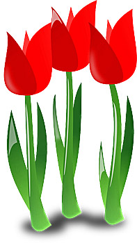 Tervetuloa kukkakauppojen palveltavaksi!
